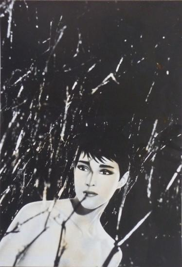 1983 carte promo 'Dovanna' expo gal Texbraun