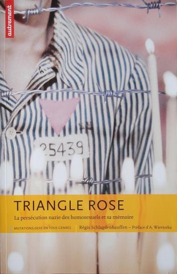 2011 Régis Schlagdnhauffen: Le triangle rose
